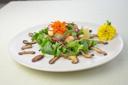 Bunter Frühlingssalat - Ein feines Rezept mit Edelpilzen und Spargel.